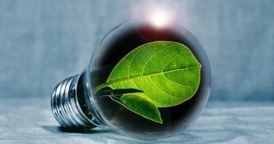 Er bæredygtige indkøb vejen?