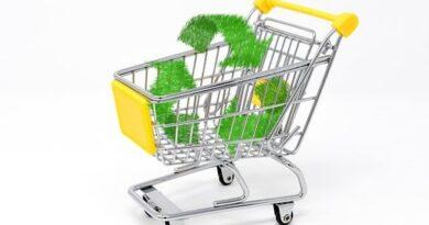 Bæredygtighed i udbud- et væld af muligheder
